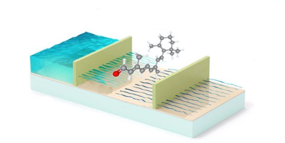 Chemical identification through two-dimensional electron energy-loss spectroscopy