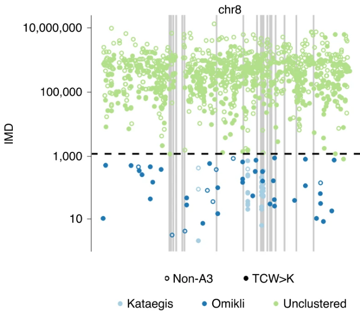 Mutation thunderstorms and mutation fog example in a cancer genome.